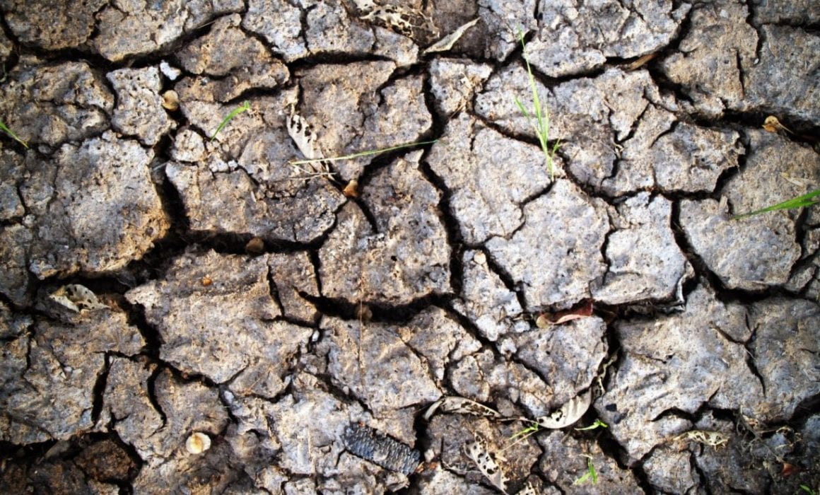 Cracked soil due to drought and climate change