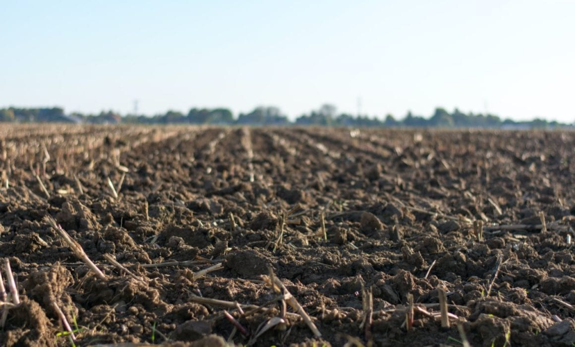 Farm Land that has been tilled