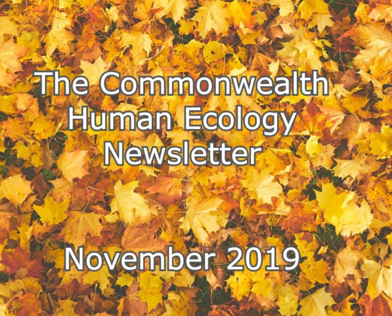 The Commonwealth Human Ecology Council Newsletter – November 2019