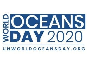 """Mapping the Commonwealth one coral reef at a time"" – World Oceans Day 2020 Report"