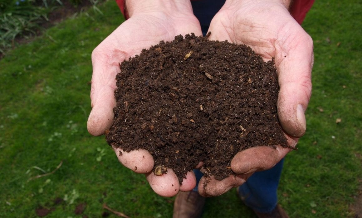 Man holding compost